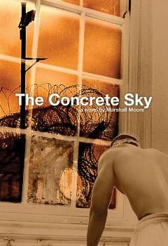 TheConcreteSky